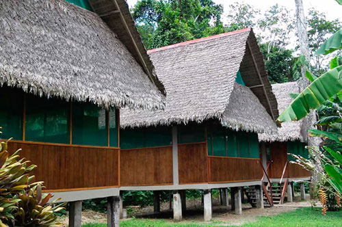 Tambopata 4 Days
